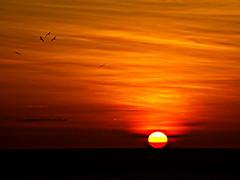 Sunset (*atrium09) Tags: travel sunset pordosol eye atardecer topf50 topv555 bravo searchthebest quality venezuela olympus 500v50f margarita thebest e330 magicdonkey 1000v40f atrium09 specsky abigfave ltytrx5 colorphotoaward impressedbeauty superaplus aplusphoto ltytr1 rubenseabra