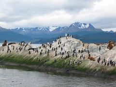 Ushuaia-Argentina9 (alpertarlene) Tags: bestnaturetnc06