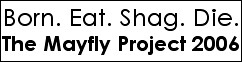 The Mayfly Project 2006