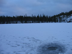 Finland (Oulanka National Park) (Dan Dispain) Tags: ice finland frozenlake reindeertracks