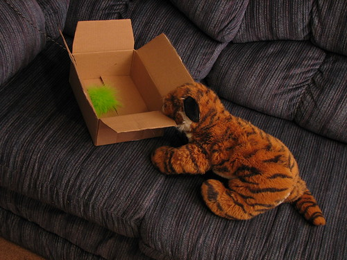 Tiger near box