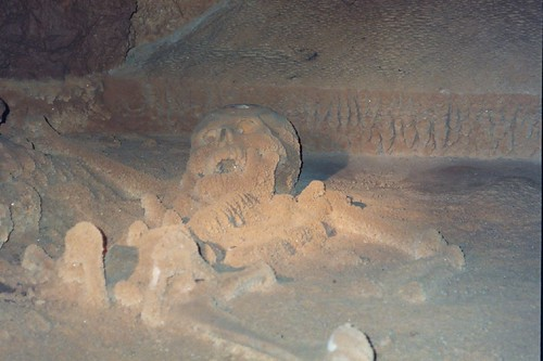 Calcified sacrificial remains of Mayan woman