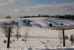 Winter in the Leelanau Peninsula.