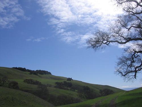 Mild  hills