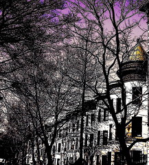 Turret & Trees - Park Slope Brooklyn (omphale44) Tags: trees newyork brooklyn 1025fav parkslope turret brownstones residentialstreet abigfave p1f1 globalvillage2