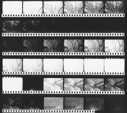 Contact Sheet, IR Roll #1, version 3