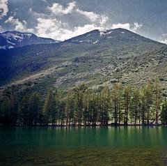 Green Water (7000 feet) (musicmuse_ca) Tags: california trees 15fav mountain green water nationalforest 1994 highsierras anseladamswilderness easternsierras inyonationalforest 123nature 7000feet