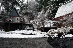 Our beachfront cabin in the snow (Ruth and Dave) Tags: snow beach cabin vancouverisland tofino weatherphotography duffincove