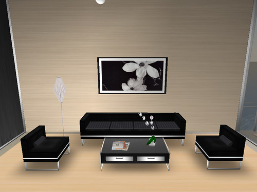 Black and White Minimalist Room Design
