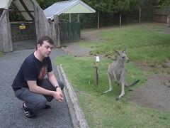 Ciaran bonding with a kangaroo