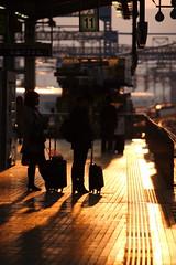 Sunset Platform (mrhayata) Tags: sunset shadow sunlight station silhouette japan train geotagged blog kyoto platform 京都 日本 shinkansen シルエット 京都市 京都府 mrhayata geo:lon=1357580156 geo:lat=349846083