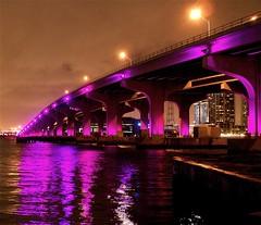 SoBe Causeway, Miami, Florida - by MrClean1982