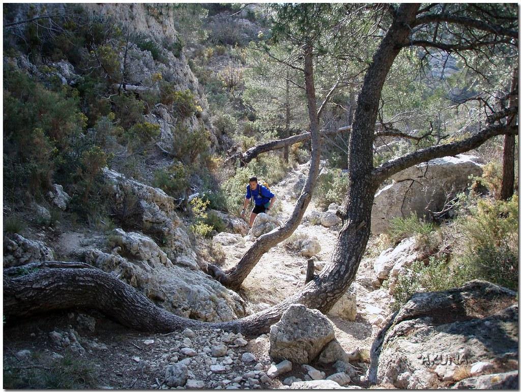 trail reco mimet 1stpart (146)reworked