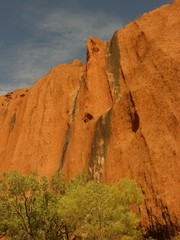 Uluru Is Quite Tall