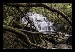 Purakanui Falls (Anita Jewell) Tags: newzealand catlins waterfall hdr canon water bush