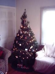 Christmas Tree 2006