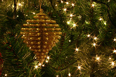 Ten Ways To Develop The Christmas Spirit