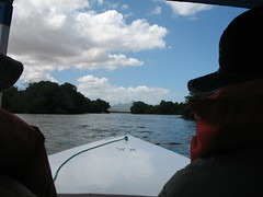 Heading out into the mangrove swamp by small boat. It was all rather quaint and unsophisticated.