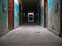 The Long Walk (Brian Utesch (shutterBRI)) Tags: travel history rose canon germany munich photography death holocaust photo vanishingpoint pain memorial decay nazi wwii perspective powershot prison german jail torture ww2 jews pow dachau sufferin