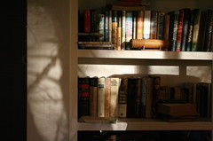 20070107_170559 (bullcreek) Tags: winter light shadows books bookshelf