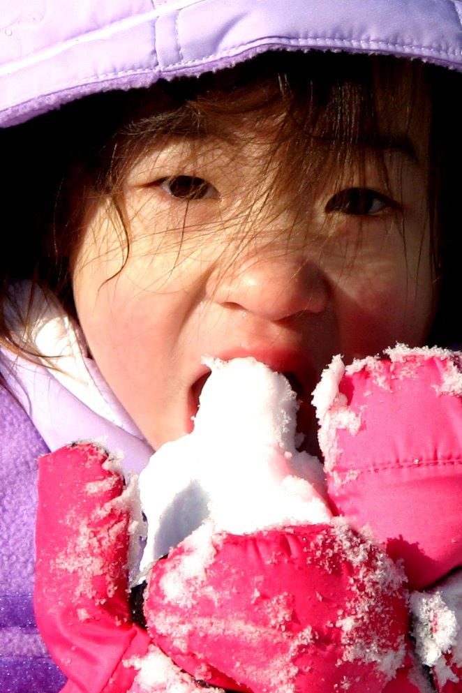 Skyler eating more snow
