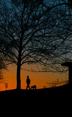 walking the dog (Yersinia) Tags: park uk greatbritain sunset england dog london public geotagged se europe unitedkingdom britain eu explore gb safe guesswherelondon londonguessed southlondon crystalpalace bromley sunriseandsunset crystalpalacepark faved travelcard se19 zone4 londonparks londonset londonbylondoners definite ccnc southoftheriver interestingness23 photographical yersinia postcoded londonpool guessedbymonkeymagic casioexz110 postedbyyersinia guessedinone geo:lat=51421085 geo:lon=0065188 gwl2007 inygm sunsetsgeotagged southlondonpool mmsfaves southlondonset londonparksset londonparkspool gwlg catfordcalendar kiloview decafaved mmsandysfaves londonboroughcollection bromleypool