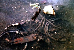 Discarded Bike in a River in Kure Hiroshima Japan (Bill(iudshi8uf)) Tags: urban abandoned bike bicycle japan river garbage rust decay rusty hiroshima pollution discarded weeklysurvivor decayed kure challengeyouwinner lpbicycles