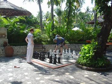 Bali-playing chess