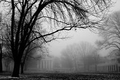 Fog and the Rotunda - by michaelangeloew