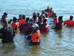 Polar Bear Plunge 2007: Rescue divers getting in