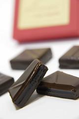 Terroirs de Bourgogne, Fabrice Gillotte, Salon du Chocolat Tokyo