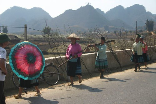 Women on their way home from another day in the rice fields...