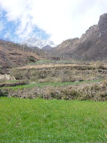 terrazas + montaña 2