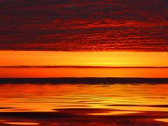 Silent Treasures (4Real) Tags: sunset photoshop bravo d70 flood 4real interestingness3 bitofme loesshills magicdonkey outstandingshots specnature mywinners abigfave flickrgold shieldofexcellence anawesomeshot colorphotoaward irresistiblebeauty magicofcolor