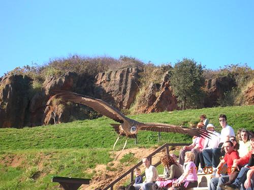 Natural Cantabria