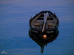 Dorna (Fco. Javier Lesende) Tags: barca olympus e1 dorna