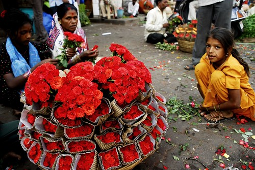 Petals, Toil and Business at Dadar's Phulgalli [PHOTO 11] - Roses