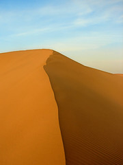 Virgin Dune - by Hamed Saber
