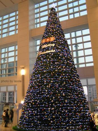 101內的巨大聖誕樹