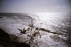 crazy ocean (zenmasterlauren) Tags: california beach lomo lca lomography pacificocean laguna southerncalifornia lagunabeach zenmasterlauren boxofzencom