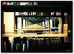 When knowledge has no limit (vanarts) Tags: singapore library books bookshelf bookshelves cy nus nationaluniversityofsingapore cy2 challengeyouwinner