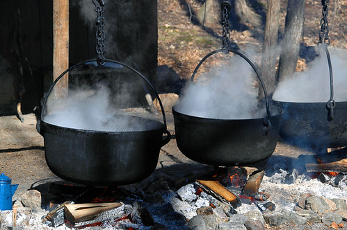 The Maple Syrup Process