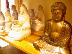 Buddhas at Essen Evolution 5
