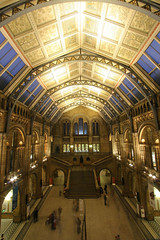Natural History Museum Main Hall (Jam - 3songsnoflash.co.uk) Tags: uk longexposure london architecture canon eos wideangle fisheye kensington naturalhistorymuseum 30d ultrawideangle efs1022 psstandard impressedbeauty