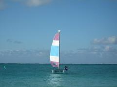 sail_jon