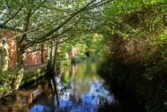 River Tillingbourne (DanielKHC) Tags: uk nature reflections river sony surrey alpha orton a100 shere tillingbourne danielcheong danielkhc