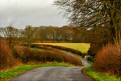 bend in the road (algo) Tags: road winter photography topf50 topv333 bravo searchthebest topv1111 chilterns topv999 ton hedges specland gtaggroup goddaym1 abigfave