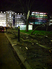 Broken tree, Finsbury Square, London