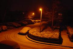 Proper snow!