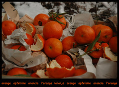 orange..apfelsin...arancia...naranja...l'orange (lartdeco) Tags: winter orange naranja arancia  apfelsin